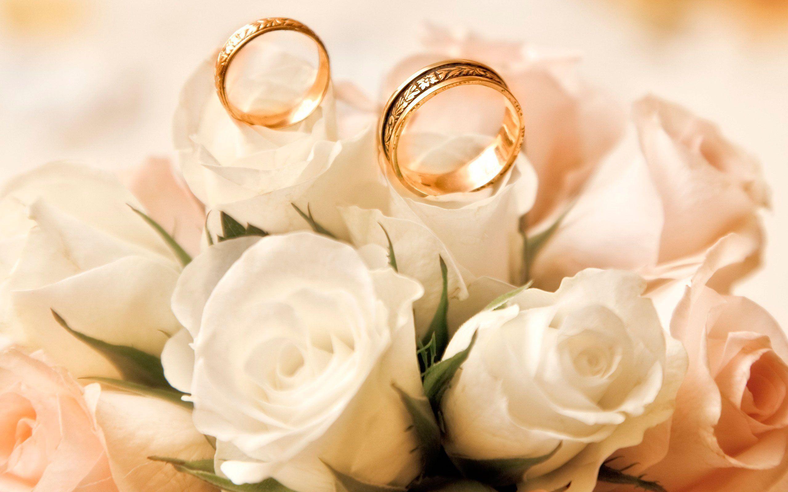чоппер картинки с годовщиной свадьбы цветы сегодня снимал