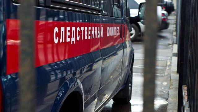 СКвозбудил уголовное дело пофакту похищения годовалой девушки вПензе