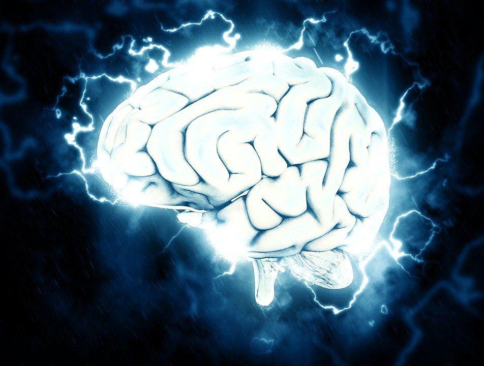 Мозг убийц выглядит подругому, чем у обыденных людей— Почему люди убивают